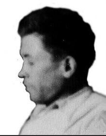וייס לוי