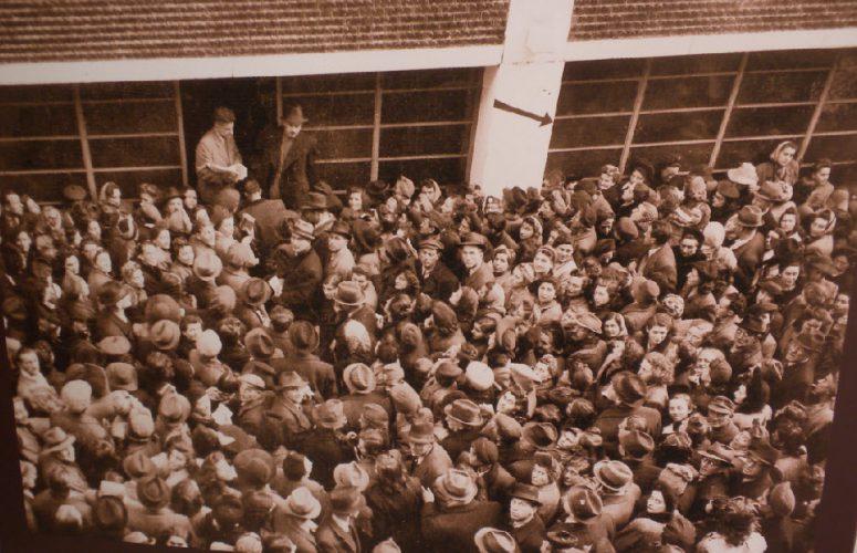 תמונה של המונים צובאים על בית הזכוכית